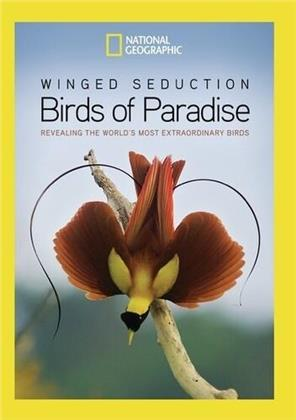 National Geographic - Winged Seduction - Birds Of Paradise