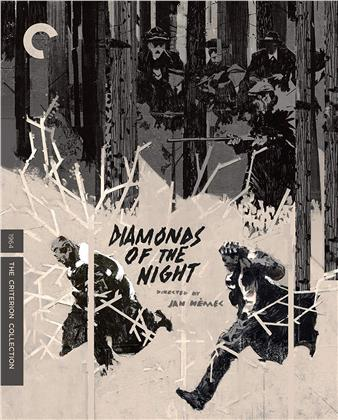 Diamonds Of The Night - Démanty noci (1944) (s/w, Criterion Collection)