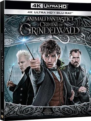 Animali fantastici 2 - I crimini di Grindelwald (2018) (4K Ultra HD + Blu-ray)