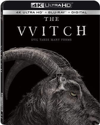The VVitch (2015) (4K Ultra HD + Blu-ray)