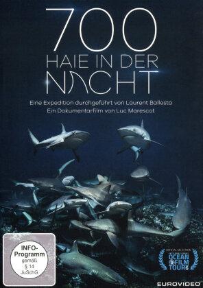 700 Haie in der Nacht (2018)