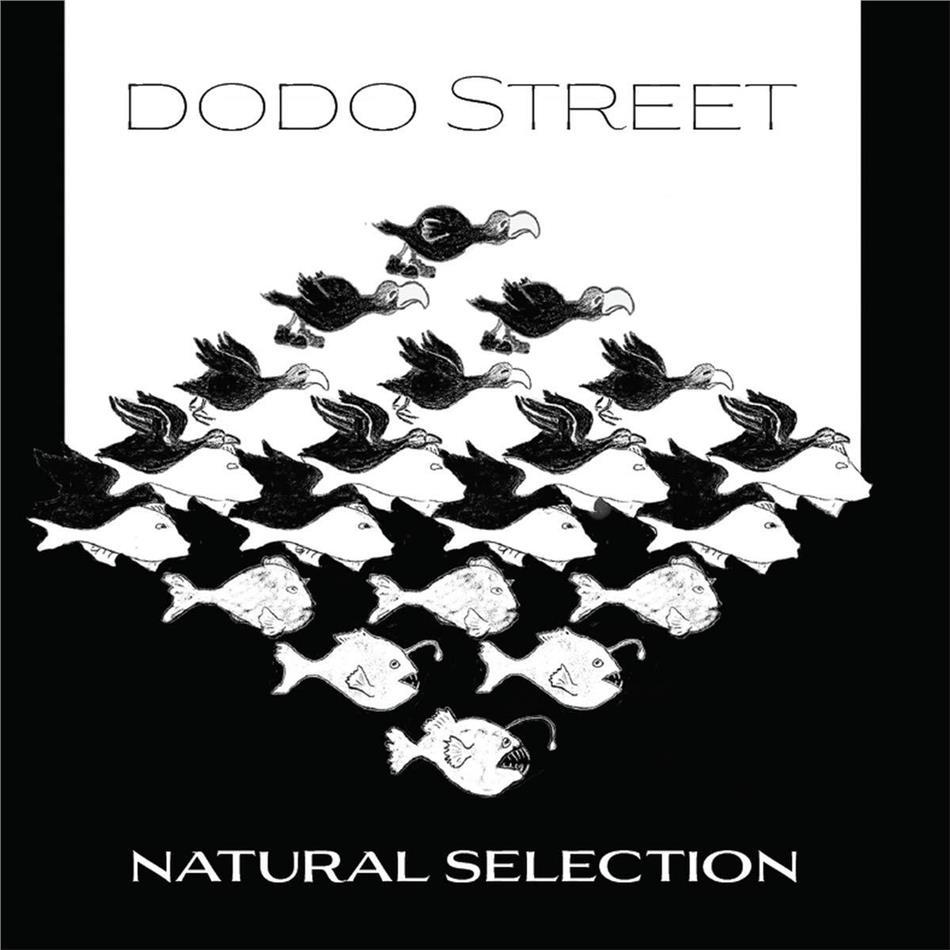 Dodo Street - Natural Selection