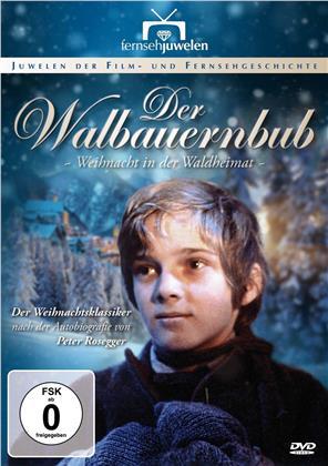 Der Waldbauernbub (1983) (Fernsehjuwelen)