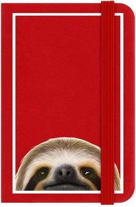 Inquisitive Creatures - Sloth - Mini Notebook