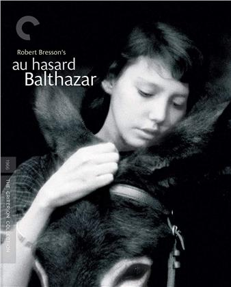 Au Hasard Balthazar (1965) (Criterion Collection)