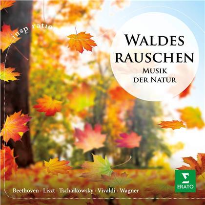 Emmanuel Pahud, Natalie Dessay & Berliner Philharmoniker - Waldesrauschen - Musik der Natur
