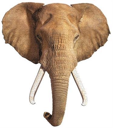 Elefant - 700 Teile Shape Puzzle