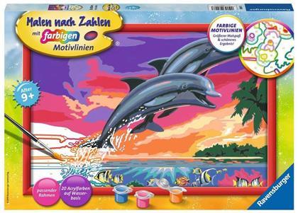 Welt der Delfine Malen nach Zahlen Serie C