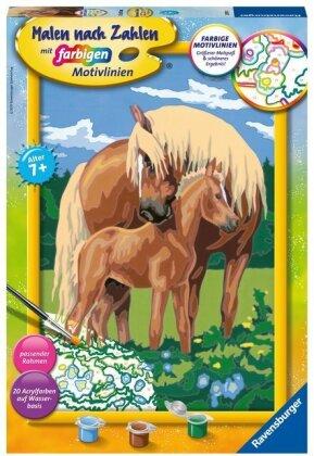 Liebevolle Pferde Malen nach Zahlen Serie C