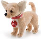 Chihuahua - 21 cm