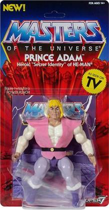 Masters Of The Universe 5.5 Vintage Prince Adam