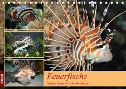 Feuerfische - Giftige Schönheiten der Meere (Tischkalender 2020 DIN A5 quer)