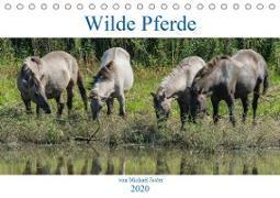 Wilde Pferde von Michael Jaster (Tischkalender 2020 DIN A5 quer)