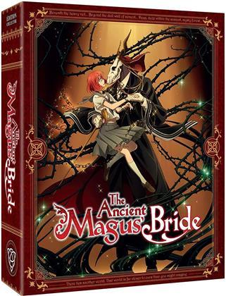 The Ancient Magus Bride - Saison 1 (Collector's Edition Limitata, 4 DVD)