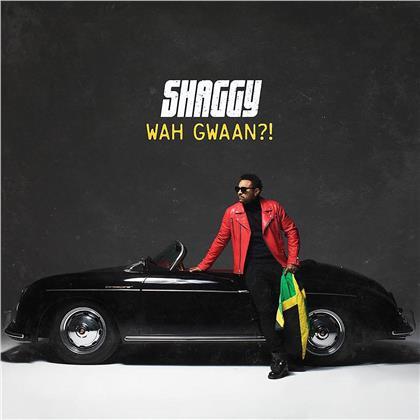 Shaggy - Wah Gwaan!? (Light Green & Yellow Vinyl, 2 LPs)