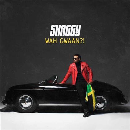 Shaggy - Wah Gwaan?!