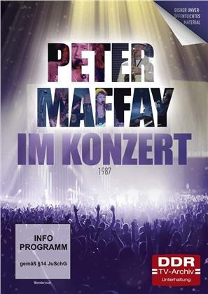 Peter Maffay - Im Konzert