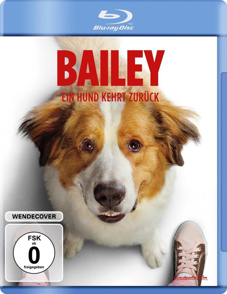 Bailey 2 - Ein Hund kehrt zurück (2019)