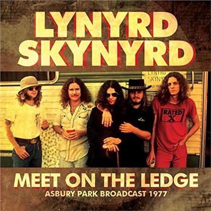 Lynyrd Skynyrd - Meet On The Ledge