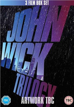 John Wick Trilogy (3 DVDs)