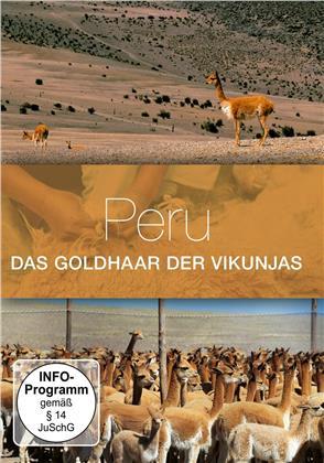 Peru, das Goldhaar von Vikunjas