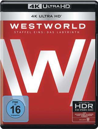 Westworld - Staffel 1 (3 4K Ultra HDs + 3 Blu-rays)