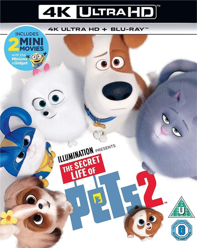 The Secret Life Of Pets 2 (2019) (4K Ultra HD + Blu-ray)