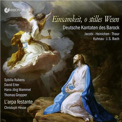 L'Arpa Festante & Christoph Hesse - Einsamkeit O Stilles Wesen - Deutsche Kantaten des Barock (Christophorus)