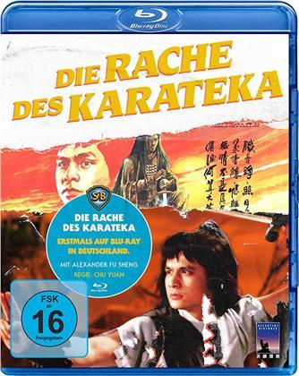 Die Rache des Karateka (1980)