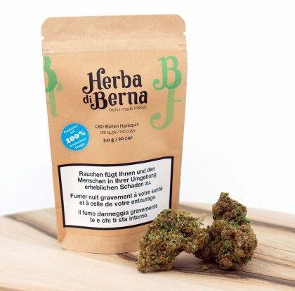 Herba di Berna Harlequin (2g) - Indoor (CBD: 14.5% THC: 0.75%)