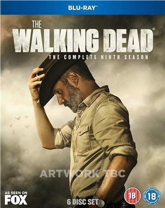 The Walking Dead - Season 9 (6 Blu-rays)