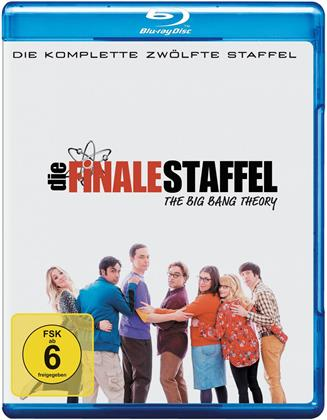 The Big Bang Theory - Staffel 12 - Die finale Staffel (2 Blu-rays)
