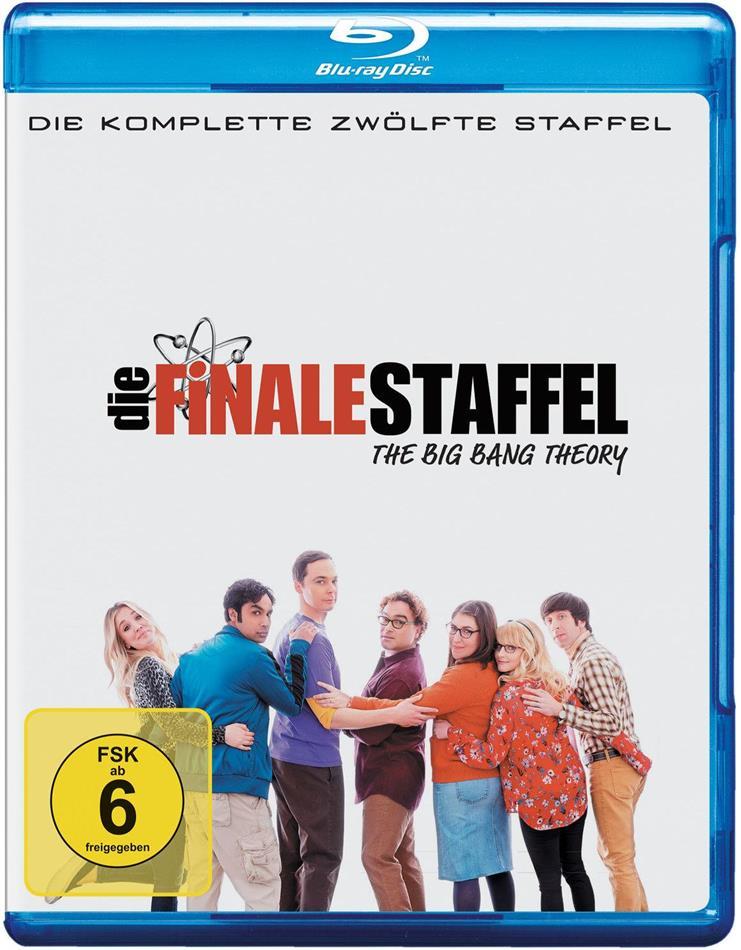 The Big Bang Theory - Staffel 12 - Die finale Staffel (2 Blu-rays)