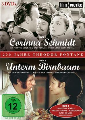 200 Jahre Theodor Fontane - Corinna Schmidt / Unterm Birnbaum / Märkische Novelle / Theodor Fontane - Wanderungen durch die Mark (Filmwerke, 3 DVD)