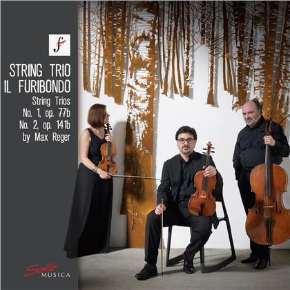 Il Furibondo & Max Reger (1873-1916) - String Trios, Op. 77b & Op. 141b