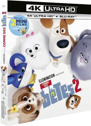 Comme des bêtes 2 (2019) (4K Ultra HD + Blu-ray)