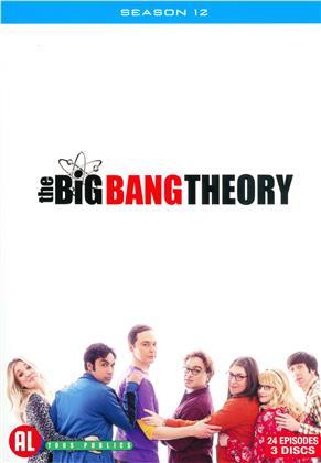 The Big Bang Theory - Saison 12 (3 DVDs)