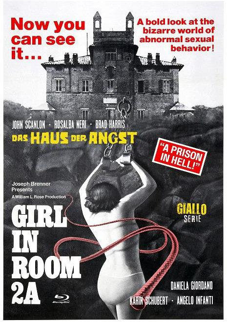 Girl in Room 2A - Das Haus der Angst (1974) (Eurocult Collection, Cover D, Giallo Serie, Limited Edition, Mediabook, Blu-ray + DVD)