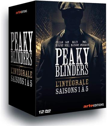 Peaky Blinders - Saisons 1-5 (11 DVD)