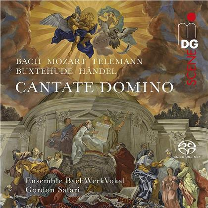 Gordon Safari & Ensemble BachWerkVokal - Cantate Domino