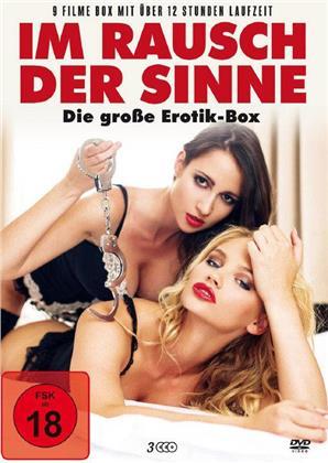 Im Rausch der Sinne - Die grosse Erotik-Box (3 DVDs)