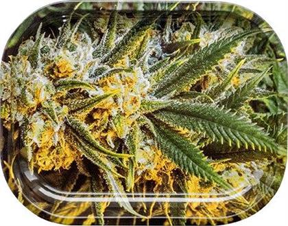 Kräuterschale - Weed 140 x 180 mm