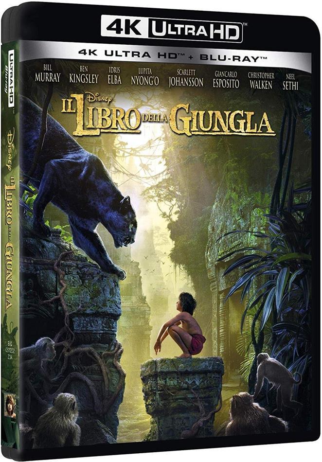 I libro della giungla (2016) (4K Ultra HD + Blu-ray)
