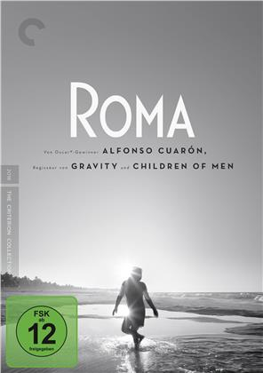 Roma (2018) (n/b, Criterion Collection, Edizione Speciale, 2 DVD)