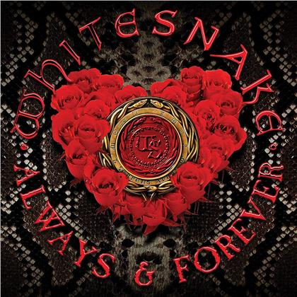 """Whitesnake - Always & Forever (Limited Edition, Picture Disc, 12"""" Maxi)"""
