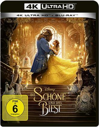 Die Schöne und das Biest (2017) (4K Ultra HD + Blu-ray)