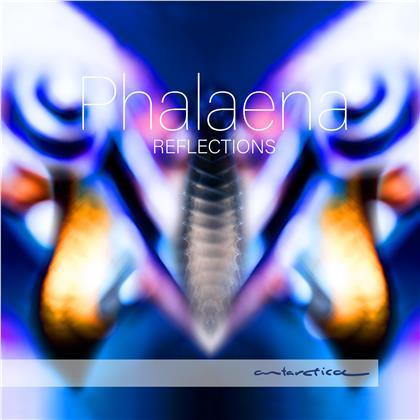 Phalaena - Reflections