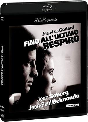 Fino all'ultimo respiro (1960) (Il Collezionista, s/w, Blu-ray + DVD)
