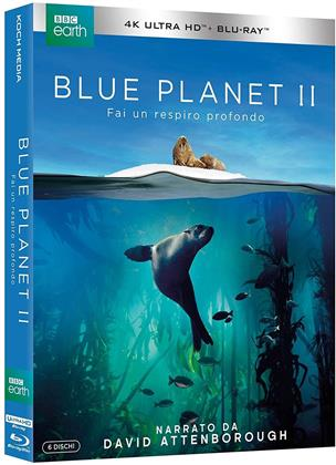 Blue Planet 2 (2017) (BBC Earth, 3 4K Ultra HDs + 3 Blu-rays)