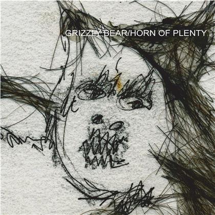 Grizzly Bear - Horn Of Plenty (2020 Reissue, Cloudy Clear Vinyl, LP)